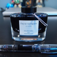 Pilot Iroshizuku Fuyu-Syogun - Handwritten Ink Review