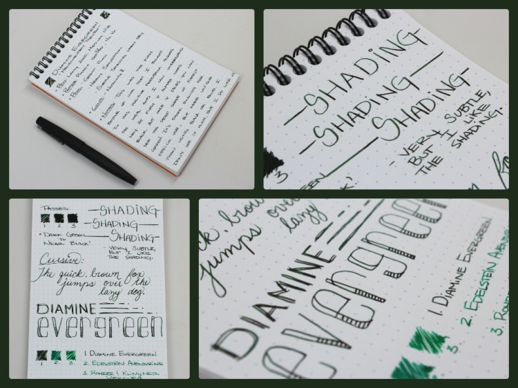 diamineevergreencoll