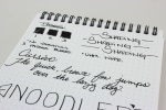 Noodler's Borealis Black Handwritten Review 4