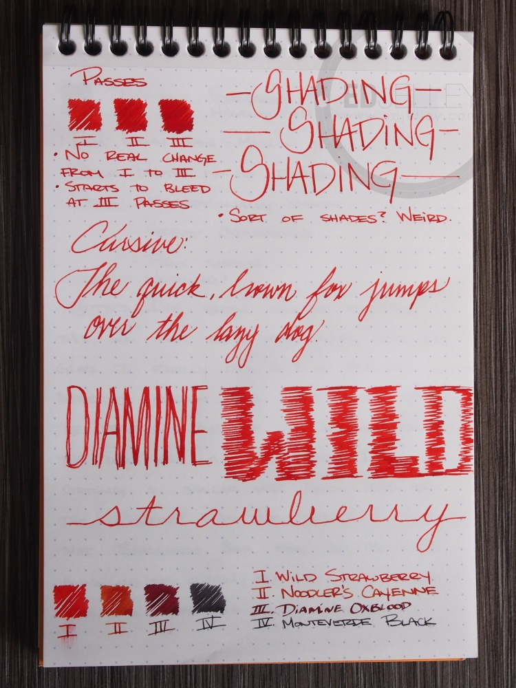 Diamine Wild Strawberry Fountain Pen Ink Review 2