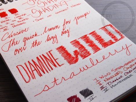 Diamine Wild Strawberry Fountain Pen Ink Review 3