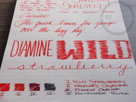 Diamine Wild Strawberry Fountain Pen Ink Review 4
