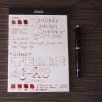 J. Herbin Terre de Feu Fountain Pen Ink Review 3