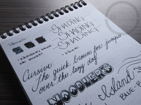Noodler's Ellis Island Blue Black Fountain Pen Ink Review 7