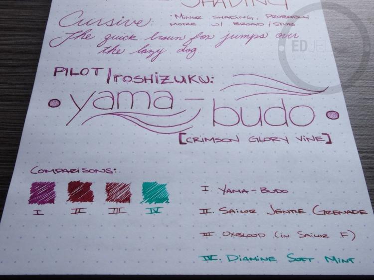 Pilot Iroshizuku yama-budo Foutnain Pen Ink Review 8