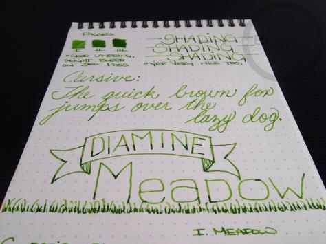 Diamine Meadow 8
