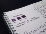 PW Akkerman Vorhoot Violet Fountain Pen Ink 6
