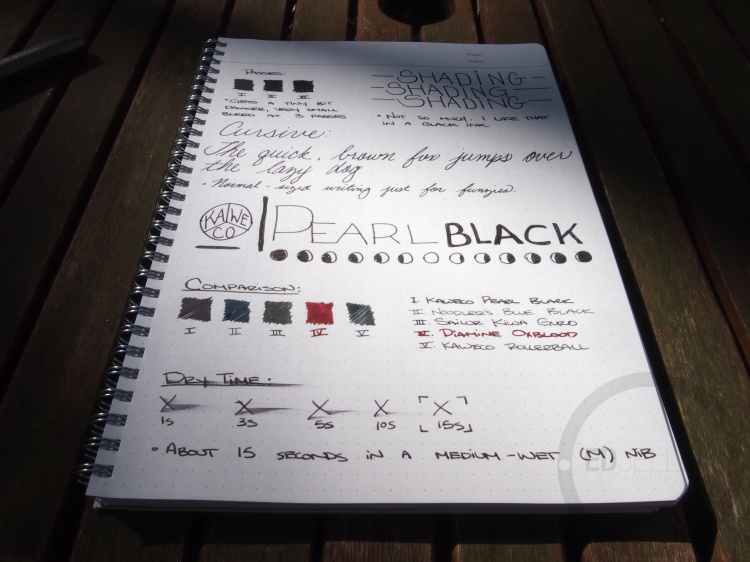Kaweco Pearl Black Fountain Pen Ink Review - in bottle