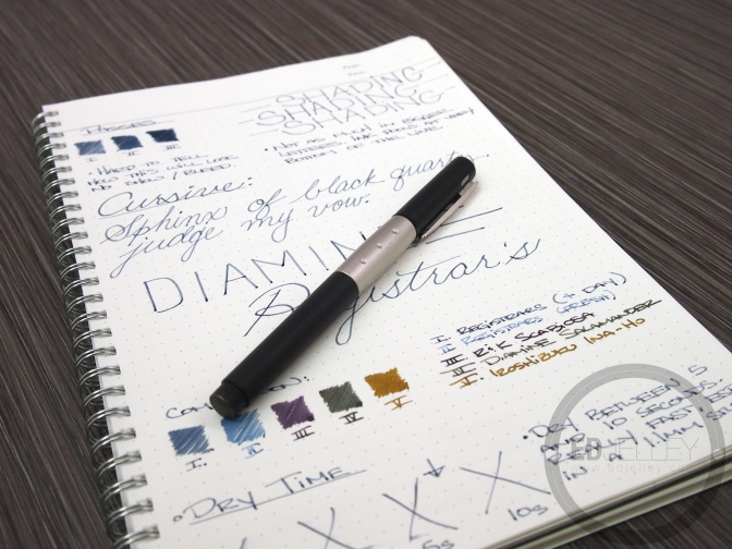 Diamine Registrar's Ink – Review