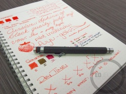 Iroshizuku Fuyu-Gaki Fountain Pen Ink Review