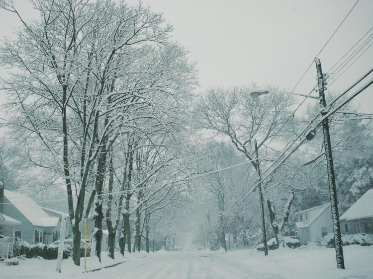 stupid dumb snow.