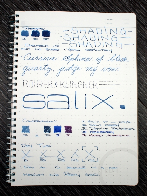 Rohrer & Klingner Salix Iron Gall Fountain Pen Ink Review