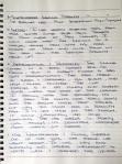 Monteverde Handwritten 3
