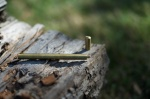 Ateleia Craft Kickstarter Pen Review