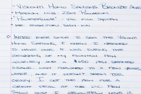 Visconti Homo Sapiens Bronze Age Review Writing Sample