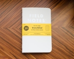 Field Notes Snowblind Review-2